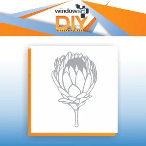 DIY_N10 (Protea)